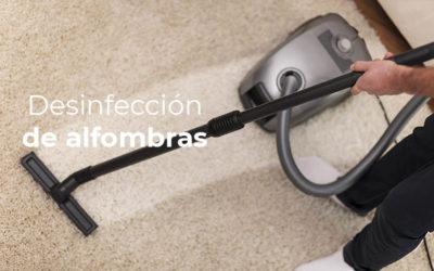 Consejos para la desinfección de alfombras antes de guardarlas